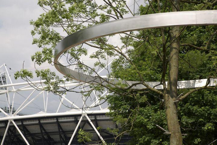 History Trees, 2012 © Ackroyd & Harvey