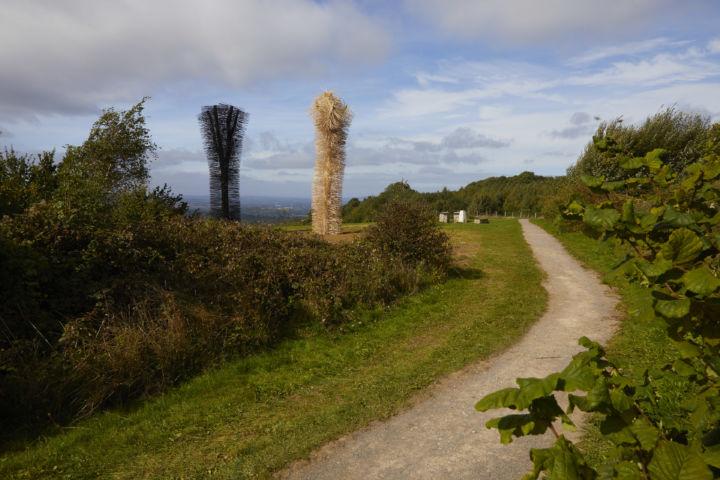 Ash to Ash, Ackroyd & Harvey,White Horse Wood. Photo: Manuel Vason