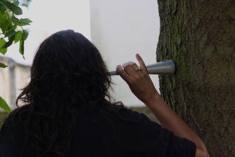 Tree Listening, Salt Festival, Folkestone. Photo: Cora Hamilton